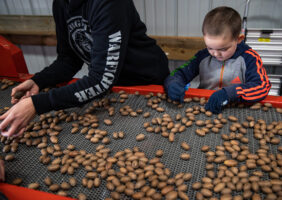Sarah Ferdico and her son Dawson work to grab rocks and other debris as it passes by on the conveyor belt. Dawson helped for a little while, but then played with toy cars and his tricycle as the adults continued to work.