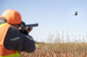 Houssam Zakhem of Edmonton, Canada shoots a pheasant during a guided hunt Friday, Oct. 25, 2019, at Beede Outdoors in Unadilla, Nebraska. The members of his group came to hunt from Texas, California and the country of Lebanon.